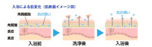 入浴による肌が乾燥するイメージ図
