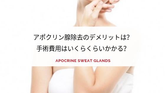 アポクリン腺イメージアイキャッチ画像
