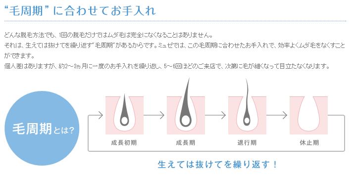 ミュゼの脱毛の施術は毛周期に合わせて行う