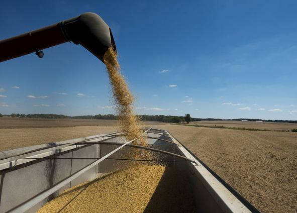 ミツカンの納豆値上げは大豆の高騰が原因だった!