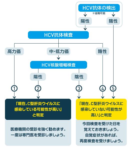 C型肝炎の検査方法