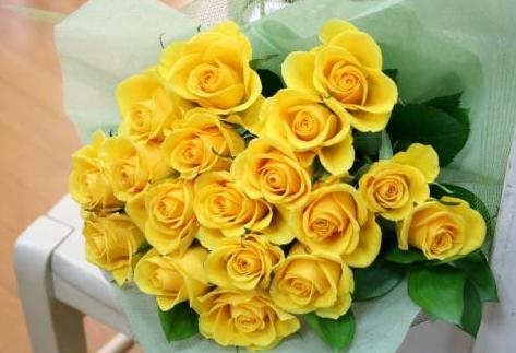 黄色のバラの意味