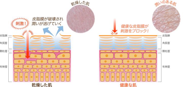 肌が乾燥する原因